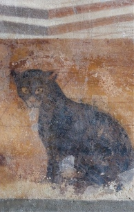 Cats were the only animals that could come and go as they pleased from the Certosa